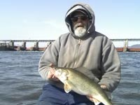 Mississippi Fishing Guide